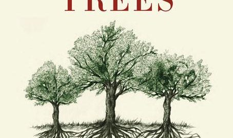 Book cover - The Hidden Life of Trees