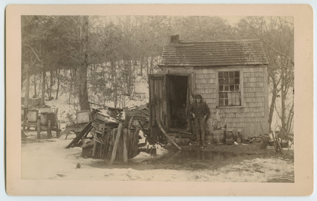 Lives Alone - The Story of Kingston's Famous Hermit