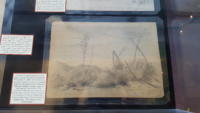 Pencil drawing of desert brush by Ada Brewster