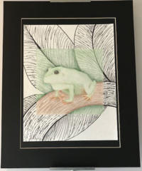 A drawing of a frog sitting on a branch.